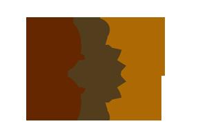 logo-dv