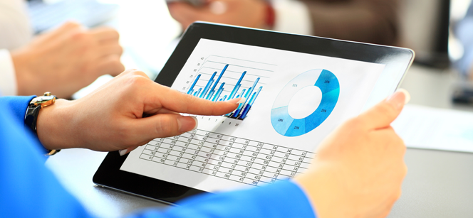 Accounting Services for Local Entities